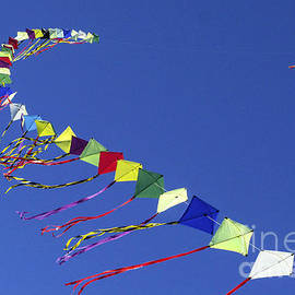 Kim Lessel - Kites in Colors and Formation