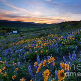 Kittitas Spring Sunset by Mike Dawson