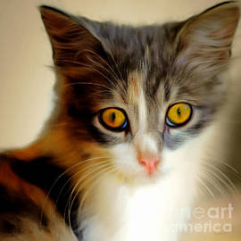 Wingsdomain Art and Photography - Kitty Cat Painterly 20170922 v1 square