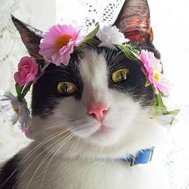 Naomi Burgess - Kitty In A Flower Crown 1
