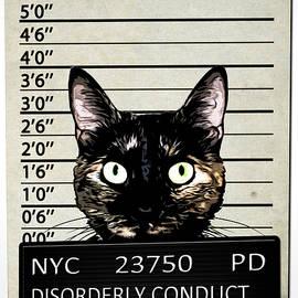 Kitty Mugshot by Nicklas Gustafsson