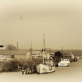 Knapps Narrows Tilghman Island by Bill Cannon