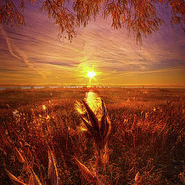 Phil Koch - Know That You Are Not Alone