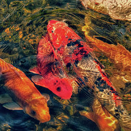 Koi Fish Fresco One