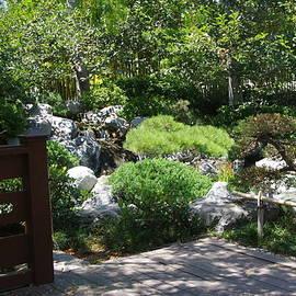 Koi Pond 12 Japanese Friendship Garden by Phyllis Spoor