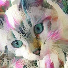 Koko the Siamese Kitten