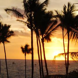 Kona Sunset by Paulette B Wright