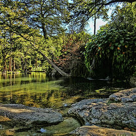 Krause Springs Natural Pool by Judy Vincent
