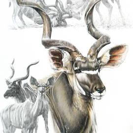 Barbara Keith - Kudu