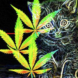 Kush Kitty by Art By ONYX
