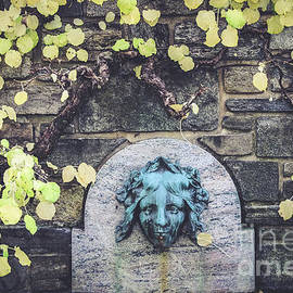 Colleen Kammerer - Kykuit Wall Fountain
