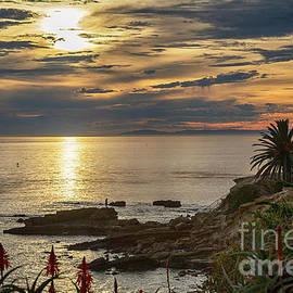Mariola Bitner - Laguna Beach Paradise