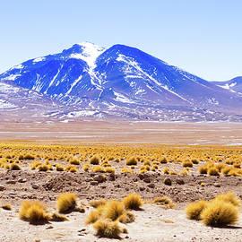 Davide Guidolin - Laguna Colorada, Bolivia
