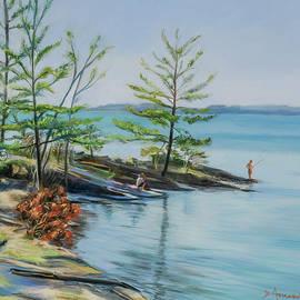 Lake Champlain by Dominique Amendola