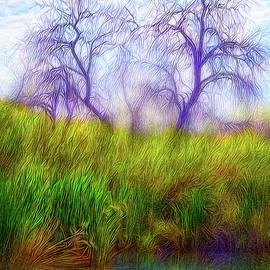 Joel Bruce Wallach - Lake Dream Peace