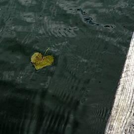 Kathy Barney - Lake Heart