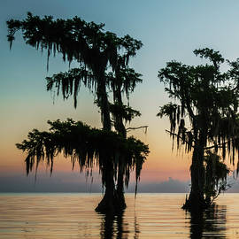 Lake Maurepas Sunrise Triptych No 3 by Andy Crawford