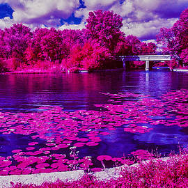 Lonnie Paulson - Lake of the Isles in Infrared