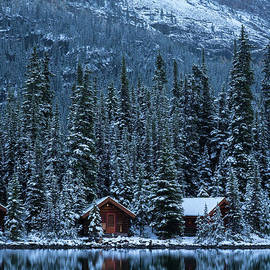 Mike Reid - Lake OHara Winter Cottages Reflected
