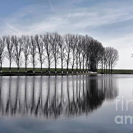 Daliana Pacuraru - Lake reflection