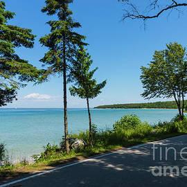 Lake Shore Drive Paradise by Jennifer White