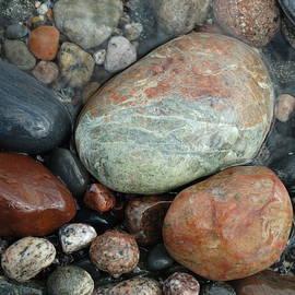 David T Wilkinson - Lake Superior Wet Rocks