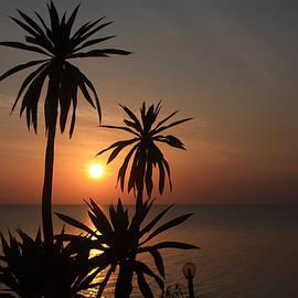 Lake Tana, Ethiopia by Aidan Moran