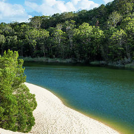 Lake Wabby, Fraser Island by Andrew Michael
