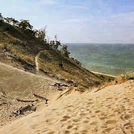 Michelle Calkins - Laketown Dune Panorama