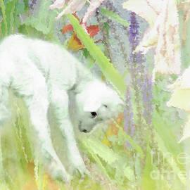 Lamb and Lilies by Anita Faye