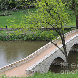 Beverly Guilliams - Landmark of Civil War, Burnside Bridge