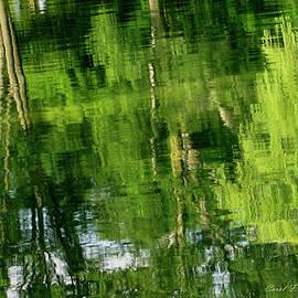 Carol F Austin - Green Tree Landscape Reflections