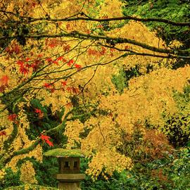 Don Schwartz - Lantern in Fall Colors