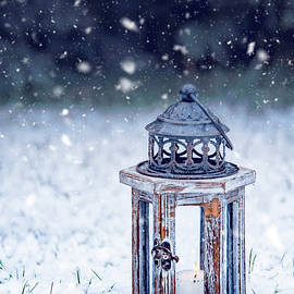 Lantern by Svetlana Sewell