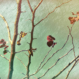 Last Leaves of Autumn in the Wind Abstract II scratched bronze by Linda Brody