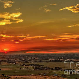 Last Of The Sun by Robert Bales