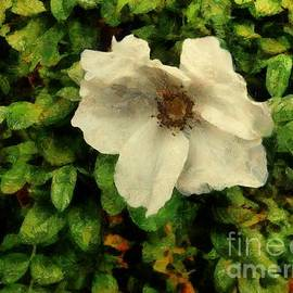 Last One Left by RC DeWinter
