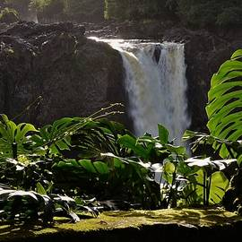 Late Afternoon at Rainbow Falls by Heidi Fickinger