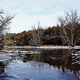 Debbie Oppermann - Late Autumn On The River