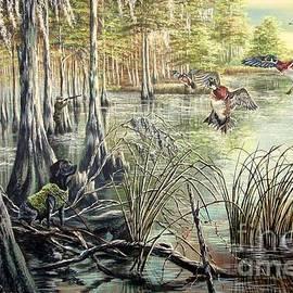 Daniel Butler - Late Season Wood ducks- Grandpa