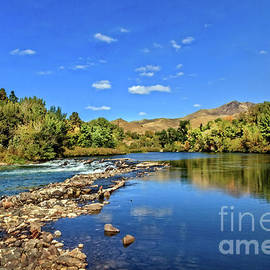 Late Summer View by Robert Bales