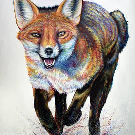 Laughing Fox by Teshia Art