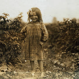 Laura Petty A 6 Year Old Berry Picker On Jenkins Farm Rock Creek Maryland 1909 by Lewis Hine Presented by Joy of Life Art