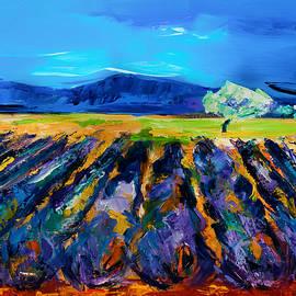 Elise Palmigiani - Lavender field