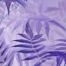 Lavender Leaves  by Sandra Foster