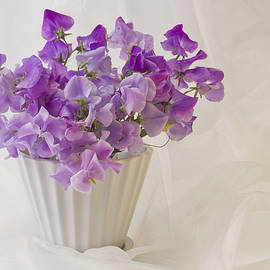 Sandra Foster - Lavender Sweet Peas And Chiffon