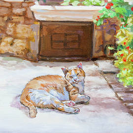 Lazy Cat by Dominique Amendola