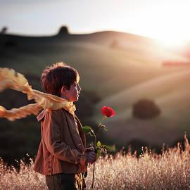 Le Petit Prince by Alexander Fedin