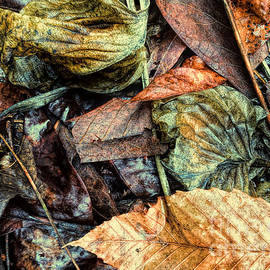Todd Breitling - Leaf Pile Light