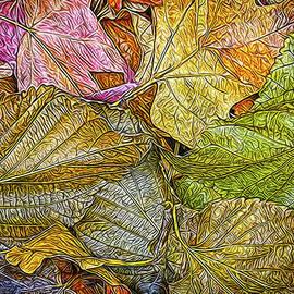 Joel Bruce Wallach - Leafy Autumn Mandala